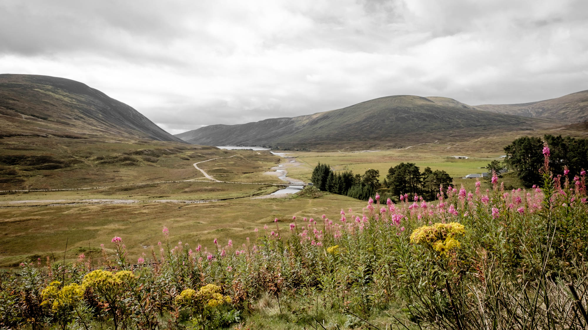 Schottland am Cairngorms National Park