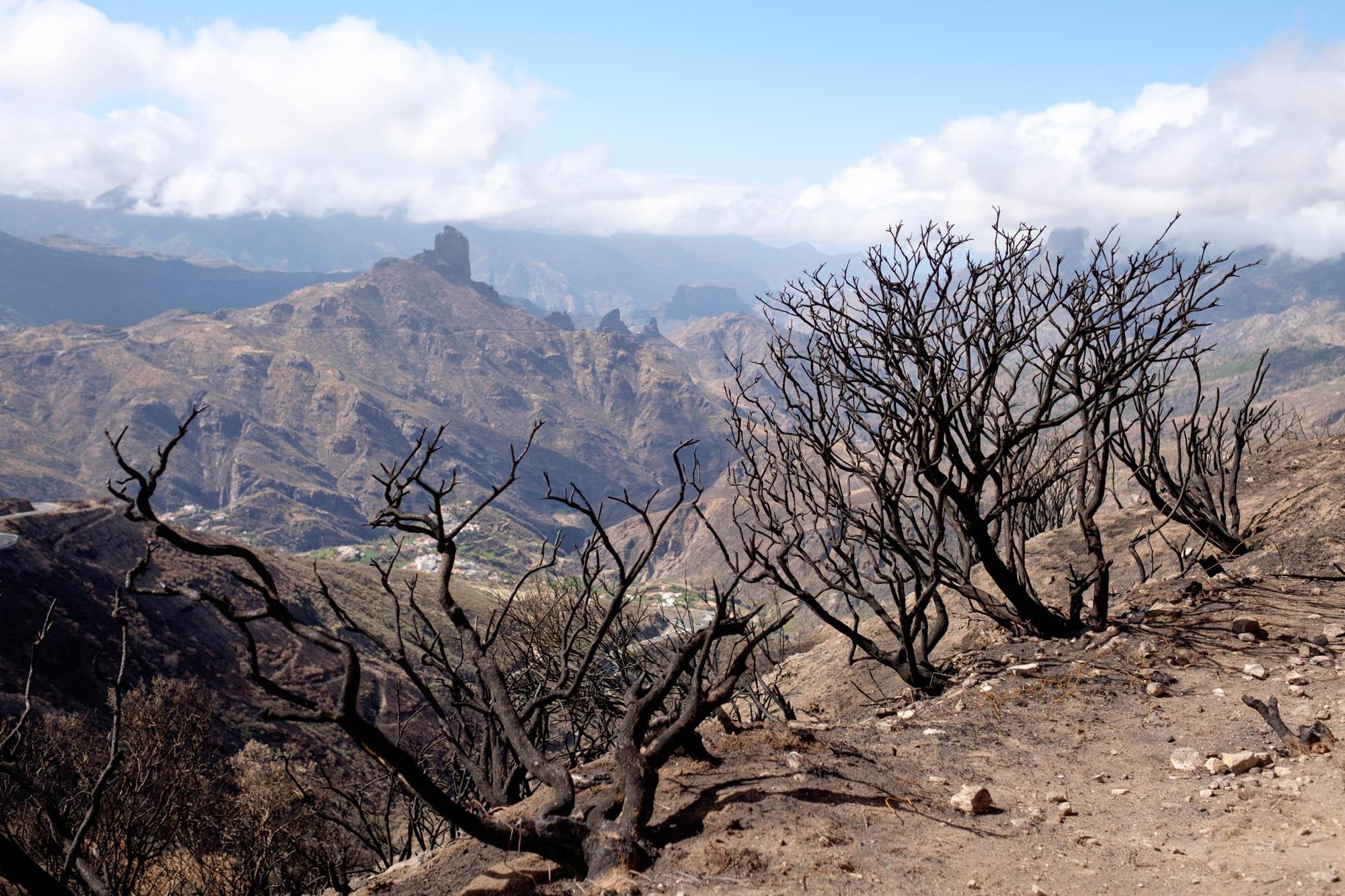 Gran Canaria Bentayga