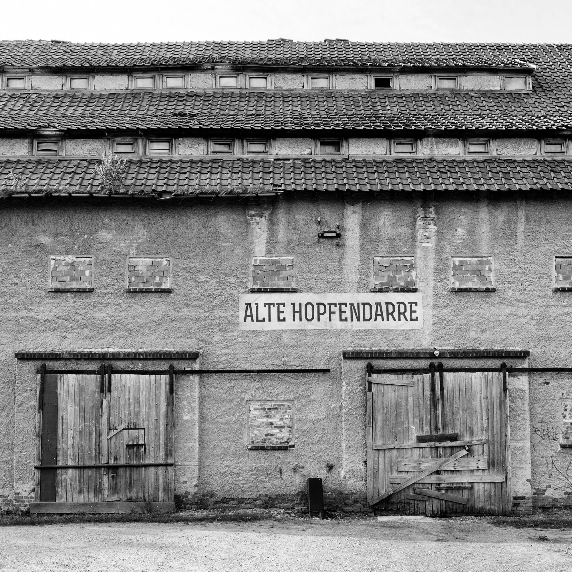 Hopfendarre bei Halberstadt