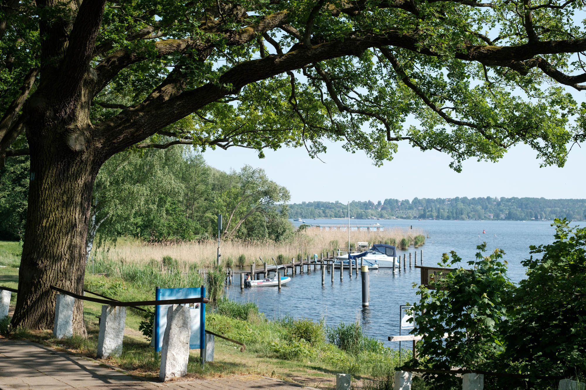 Ufer Schwielowsee