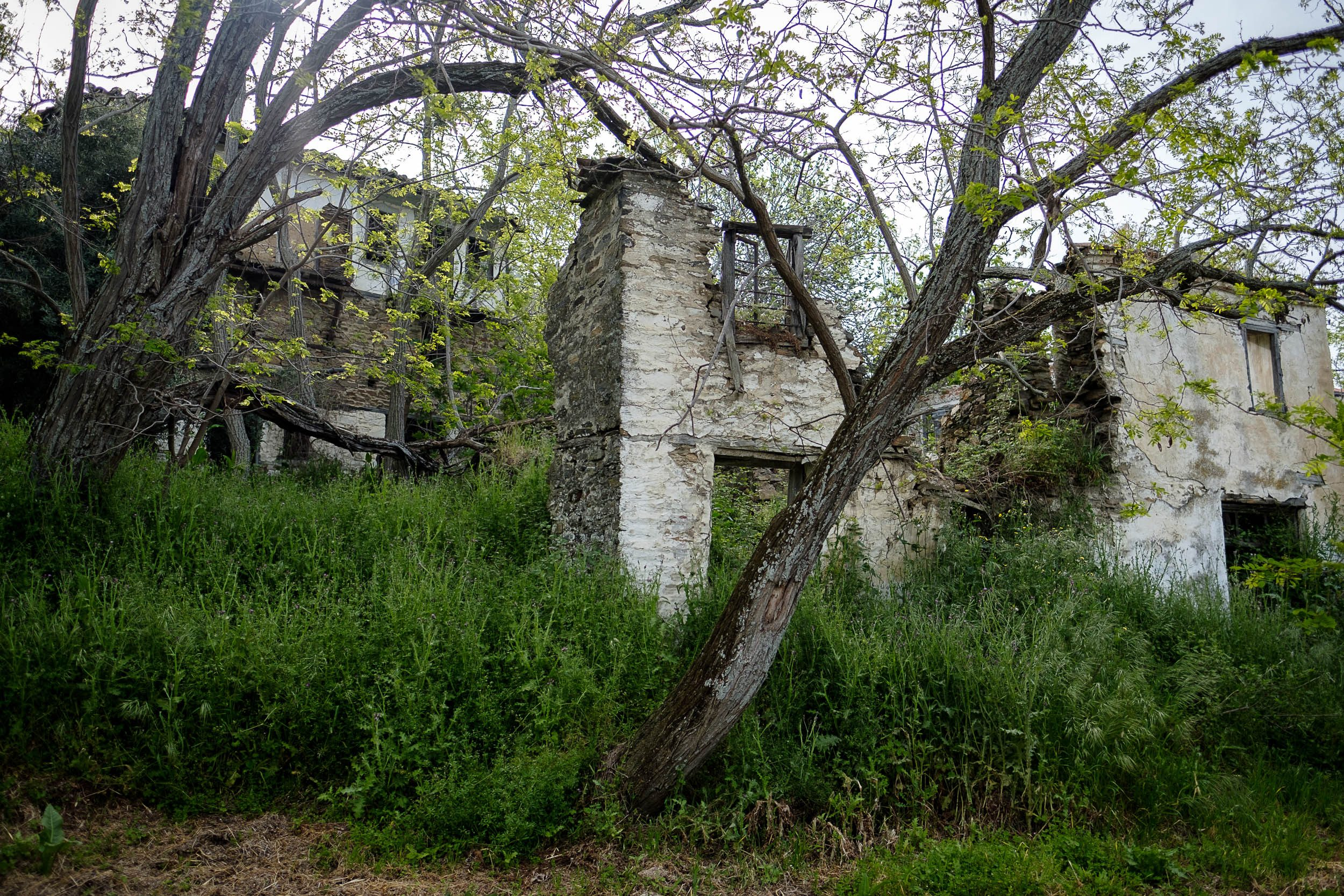 Wandern Sithonia, Chalkidiki, Greece
