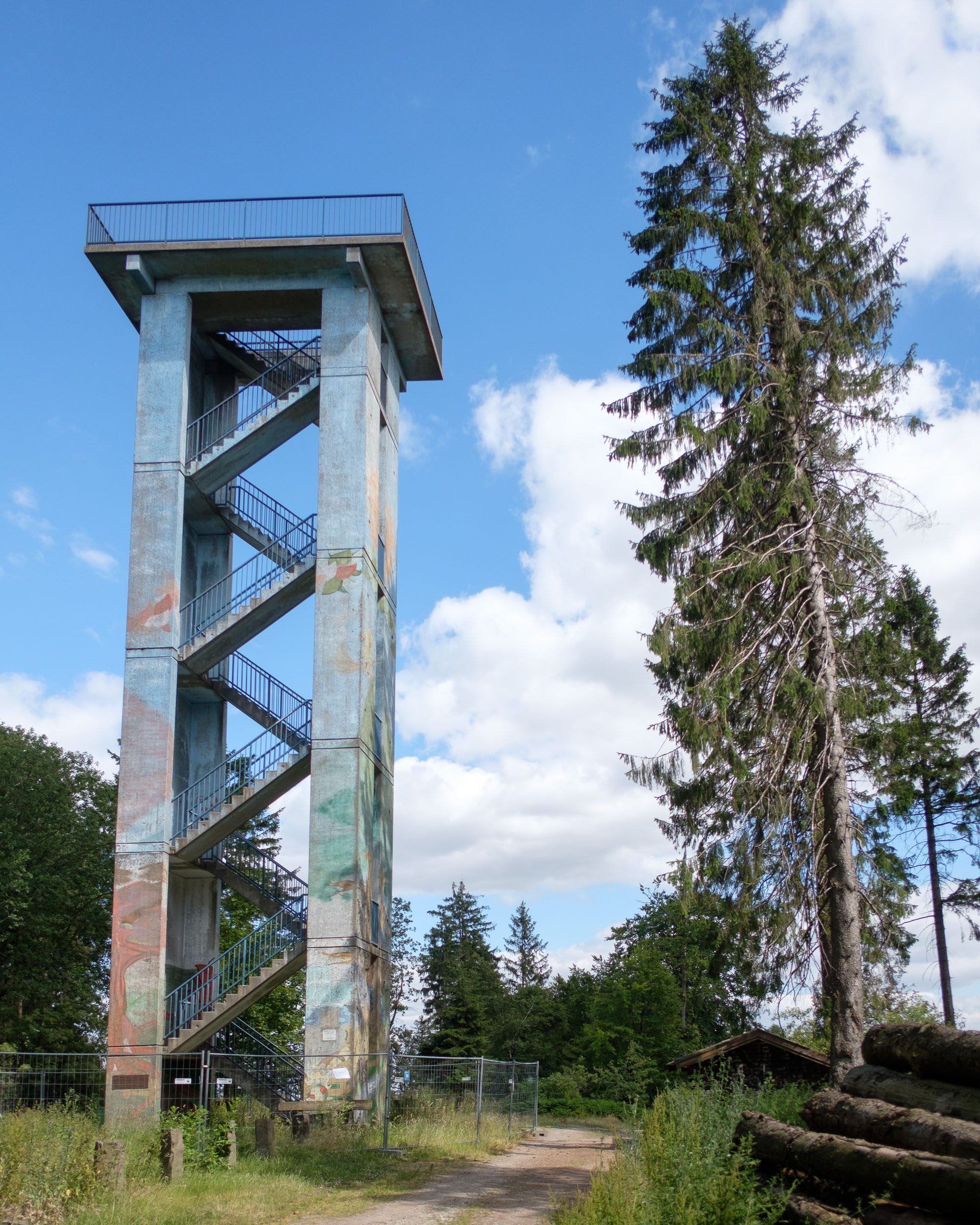 Baum an Hermannsturm Dörenberg Georgsmarienhütte