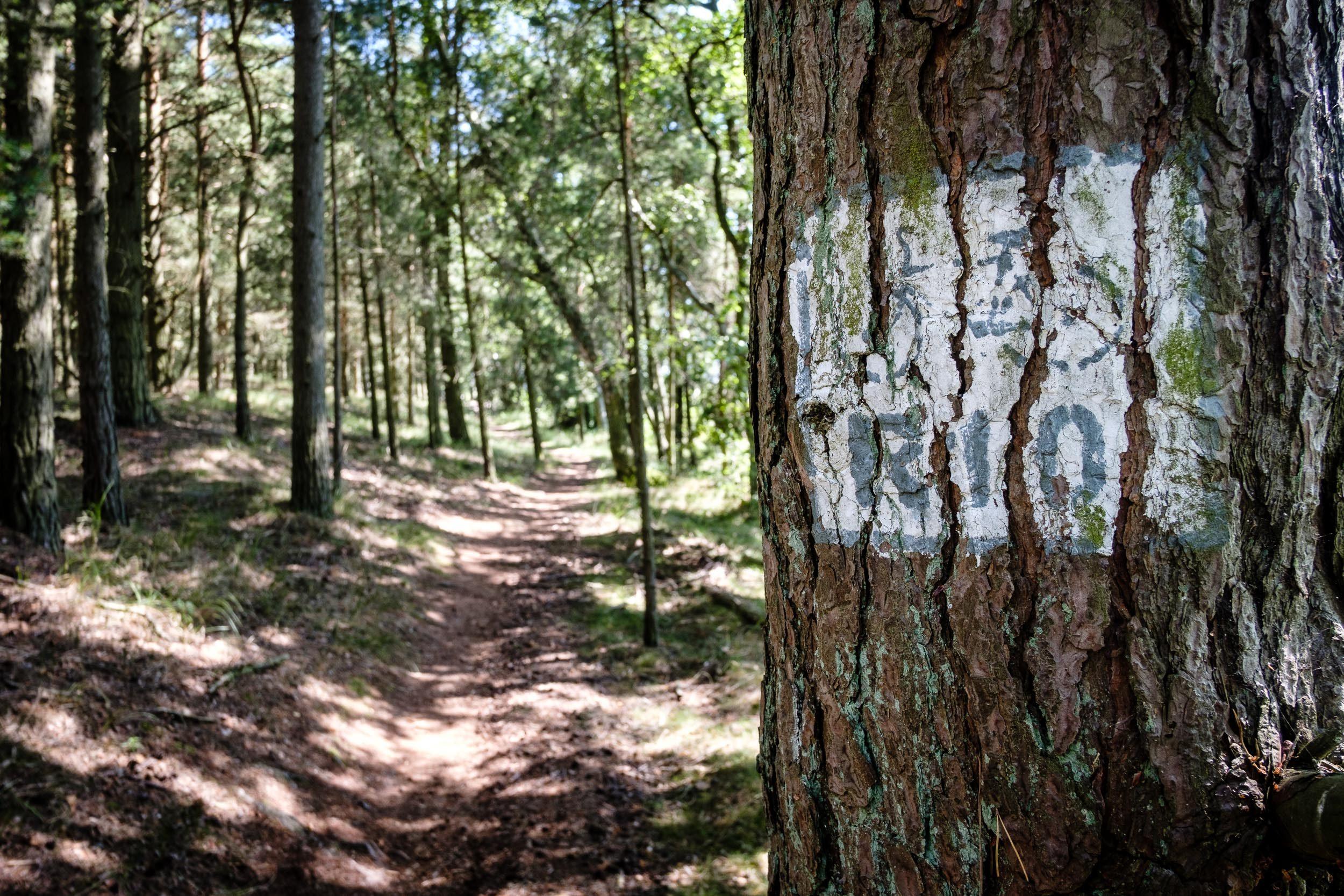 Radweg Rezerwat przyrody Mierzeja Sarbska
