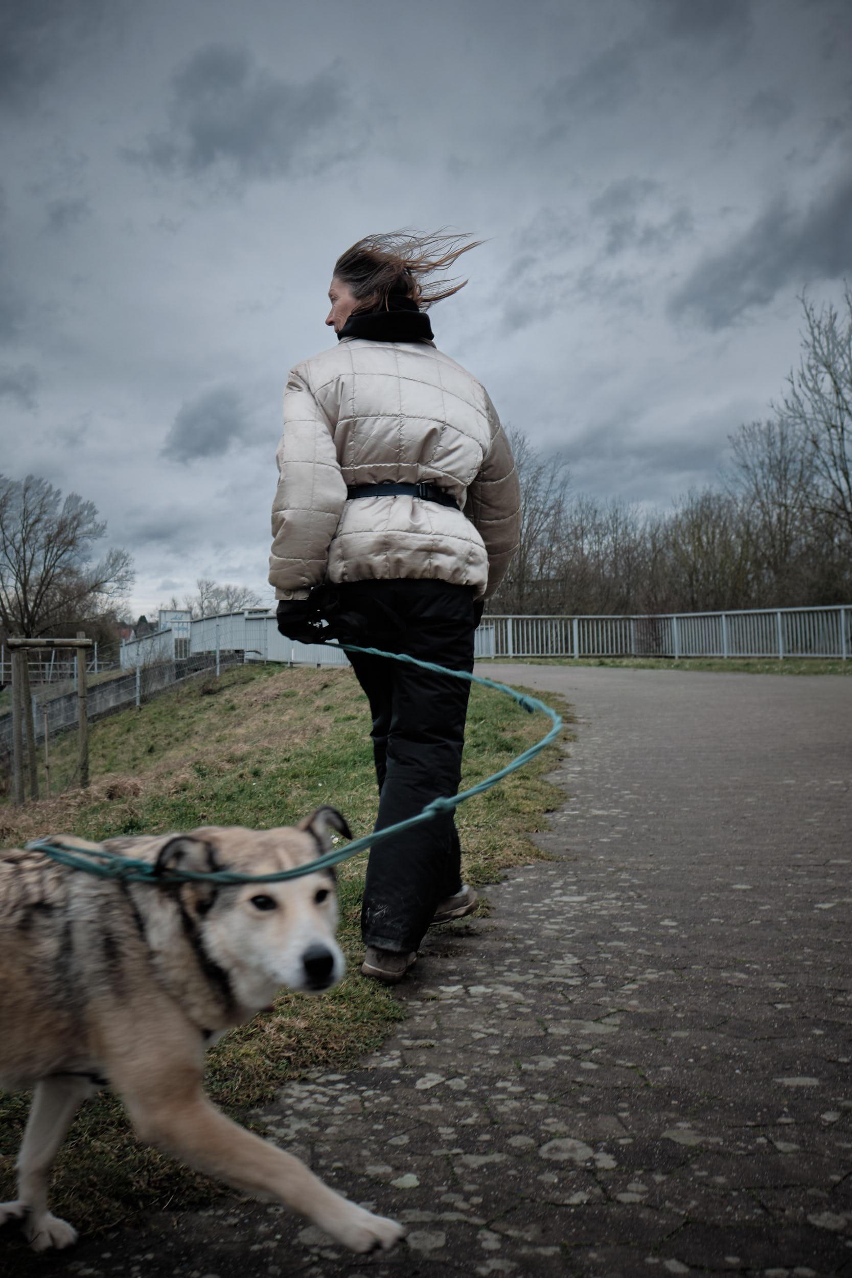 Hund Im großen Weserbogen, Porta Westfalica