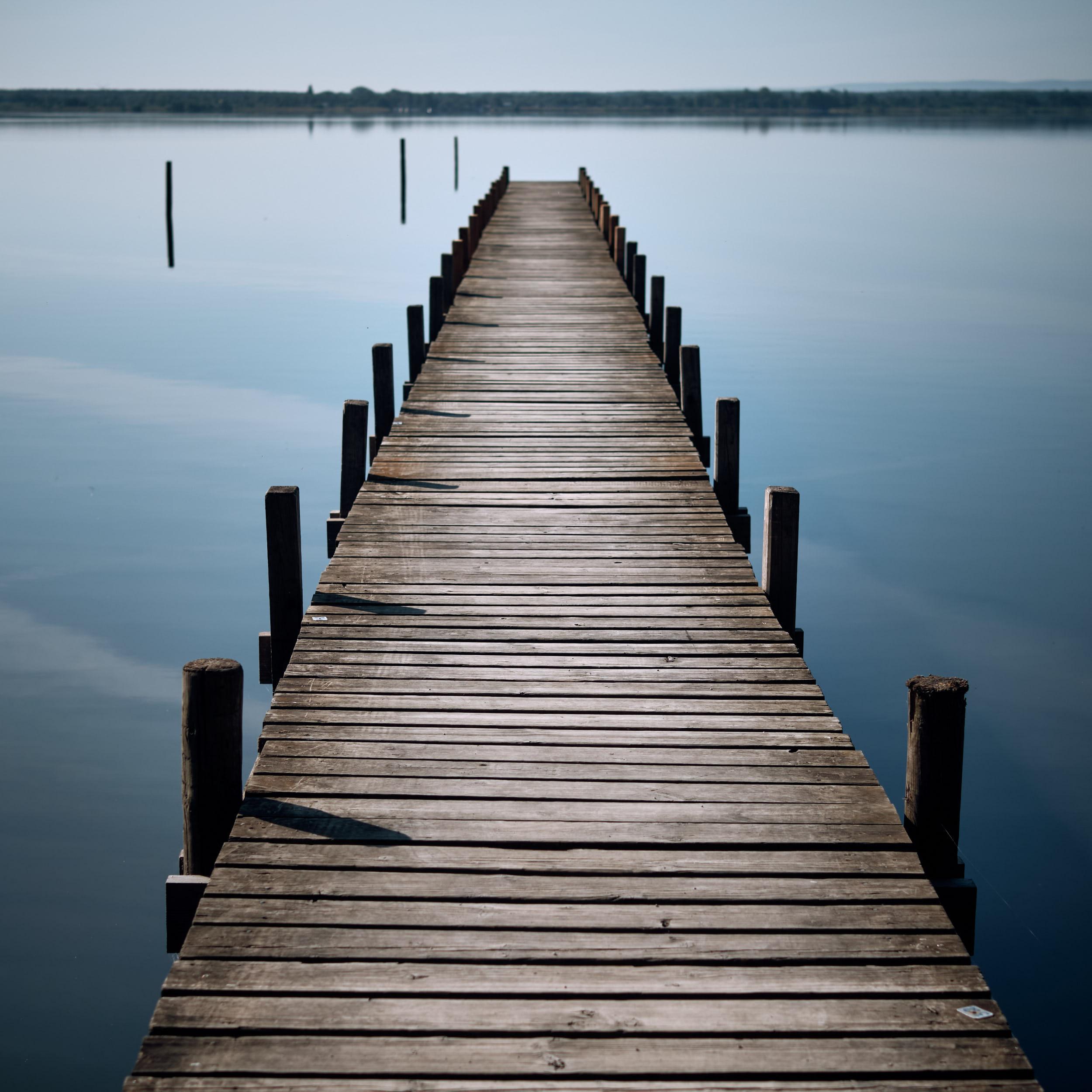 einsamer Bootssteg, Steinhuder Meer