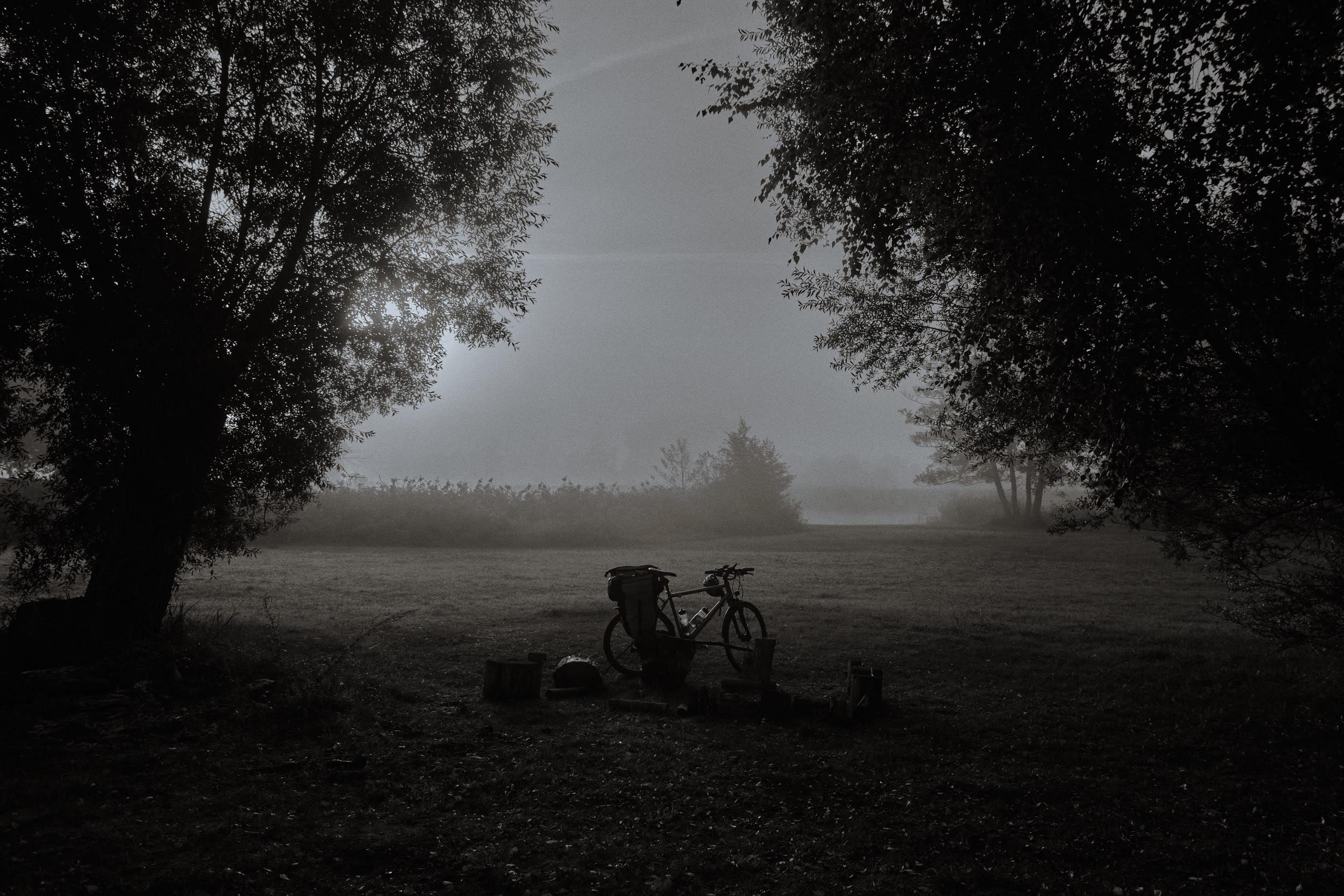 Septembermorgen an der Oder