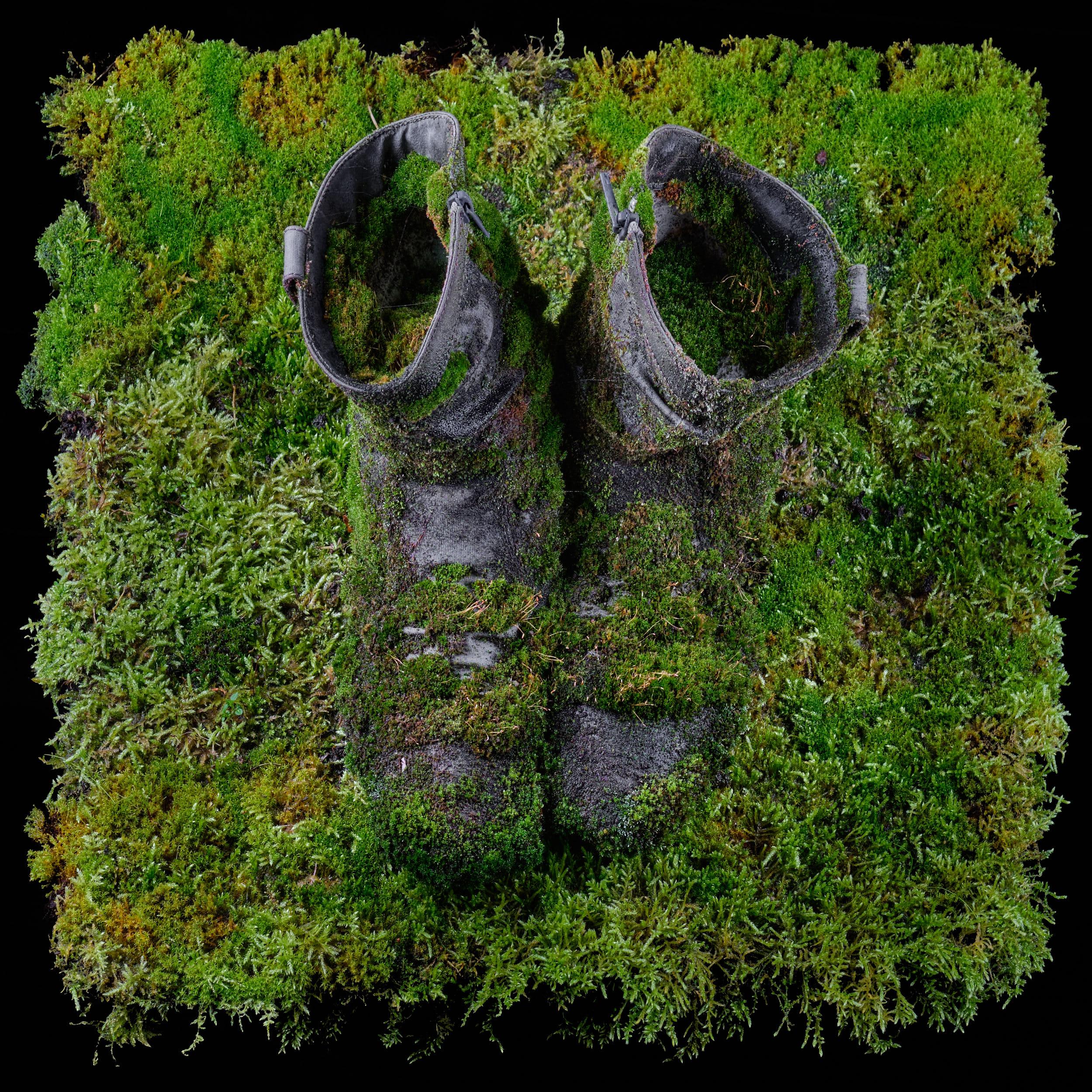 begrünte Schuhe