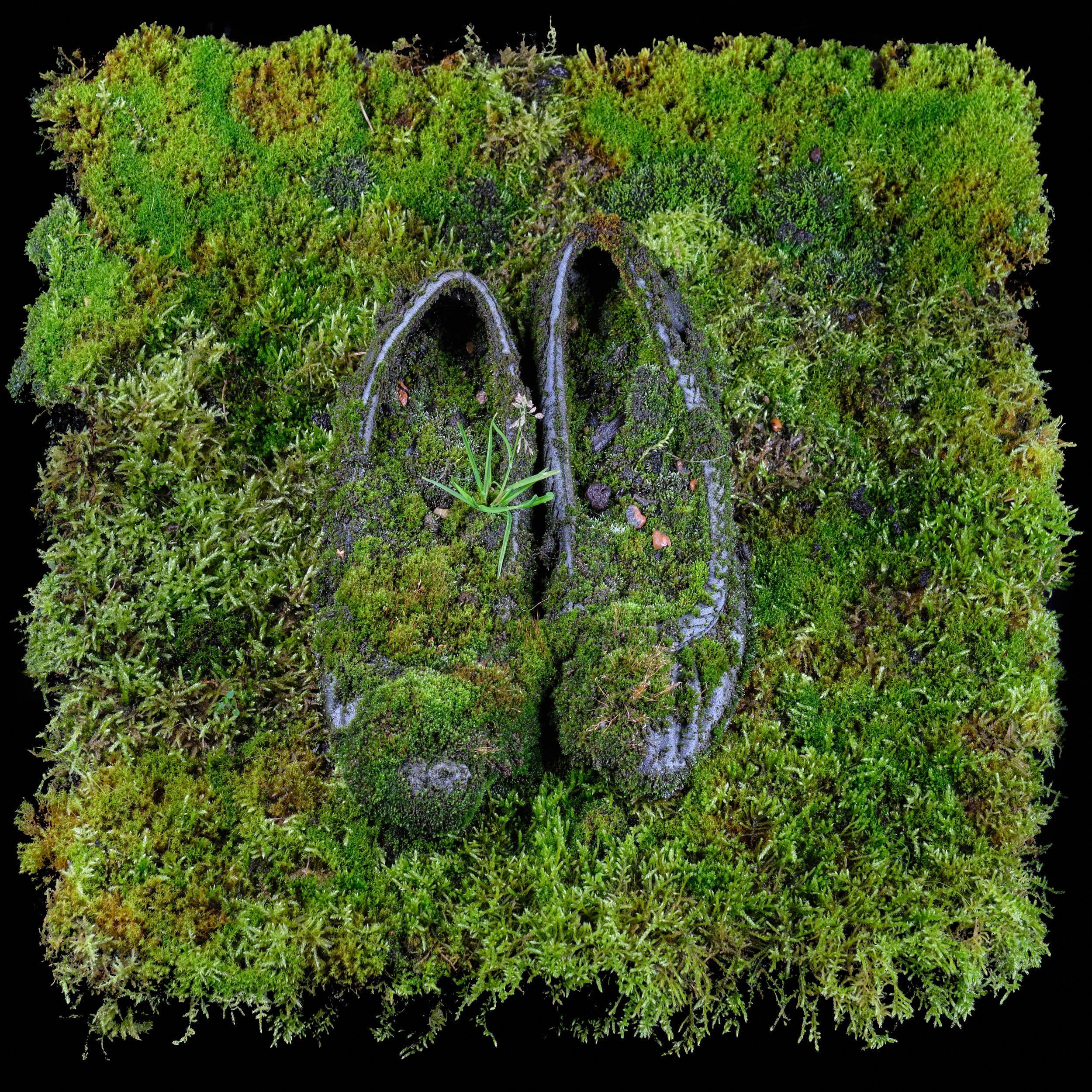 Schuhe - 10 Jahre in der Natur
