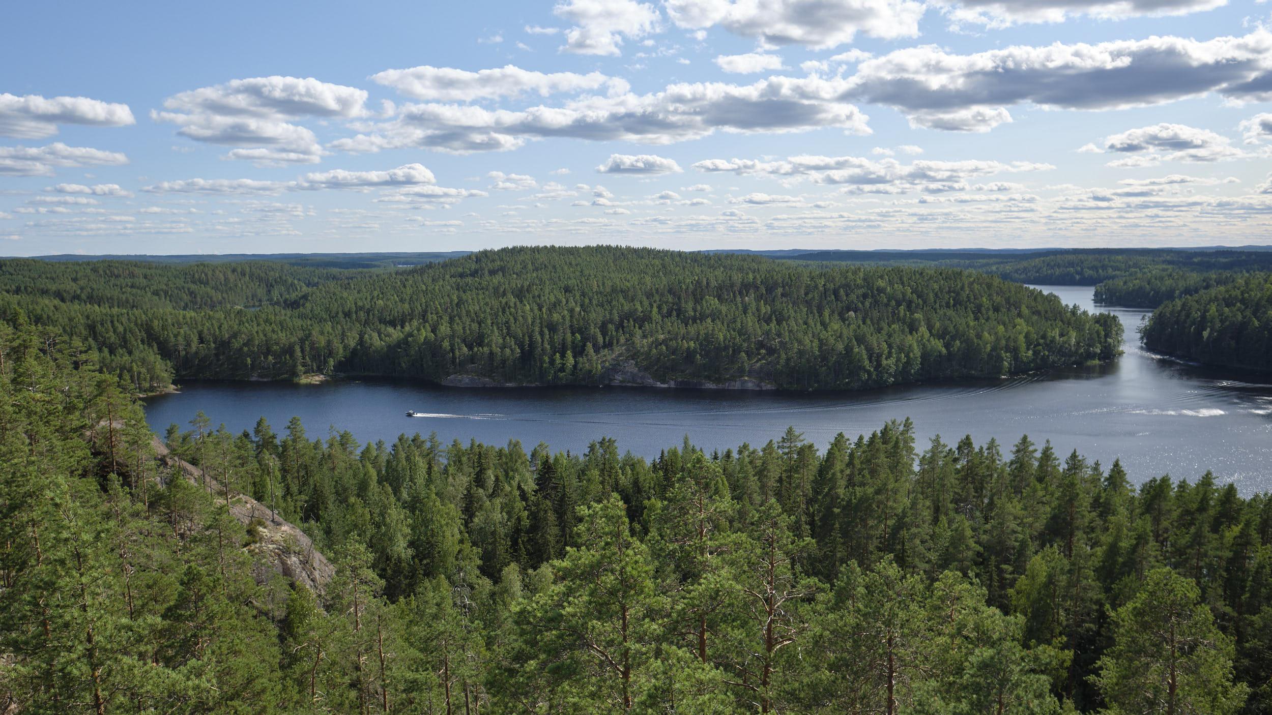 Mustanlamminvuori im Repovesi Nationalpark Finnland