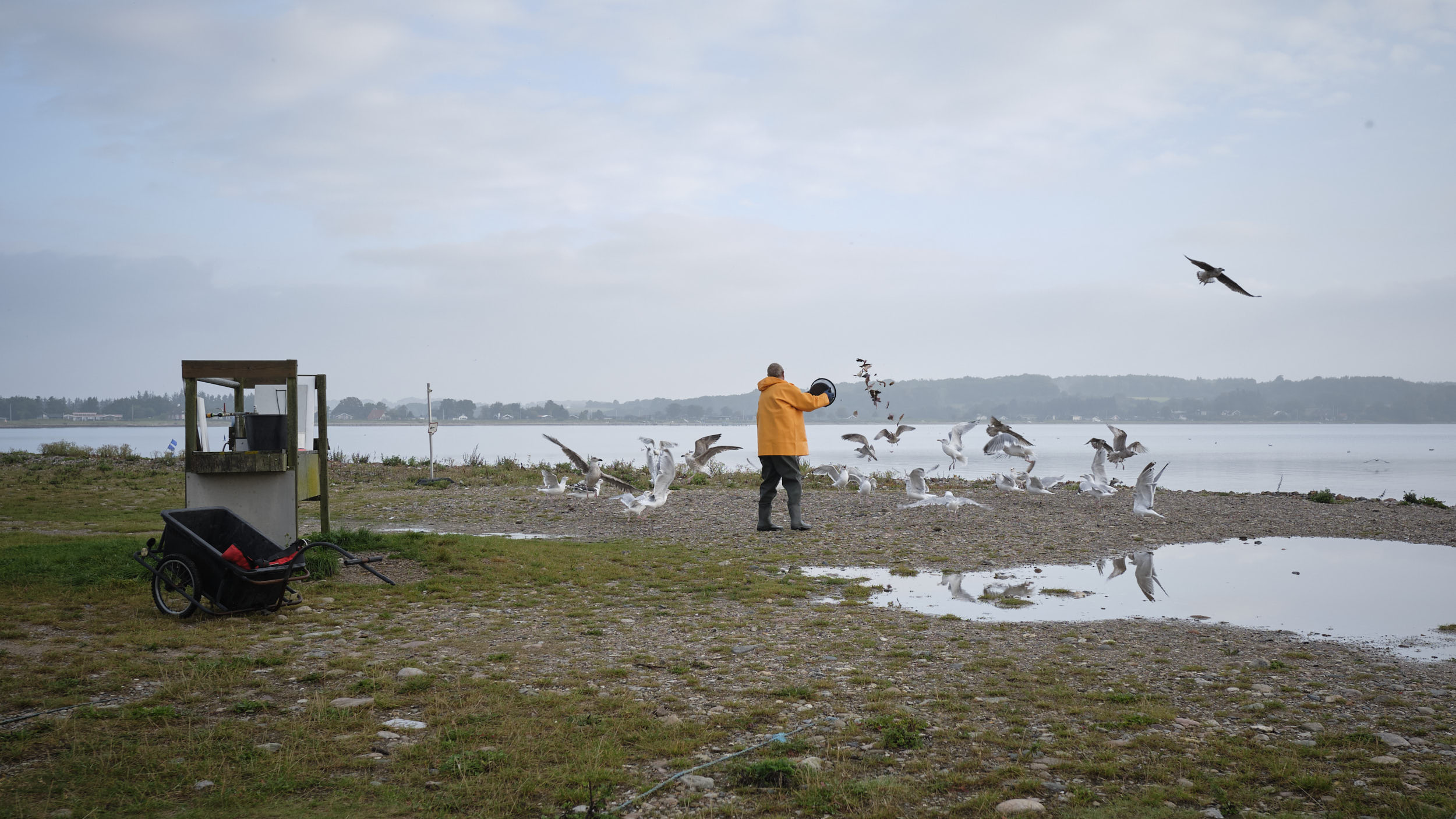Angler Ostsee Dänemark