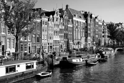 AmsterdamFUX30435