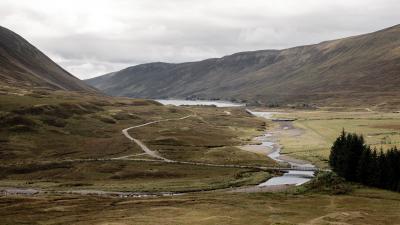 Schottland FUX44895