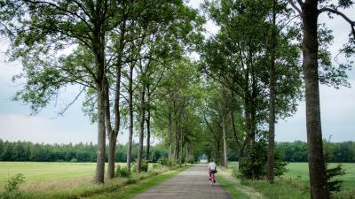 fahrradtour amsterdamFUX30026